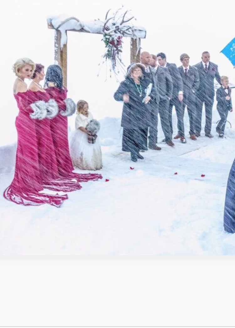 blizzard wedding party